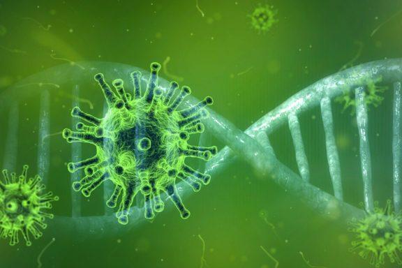 coronavirus covid-19 pixabay